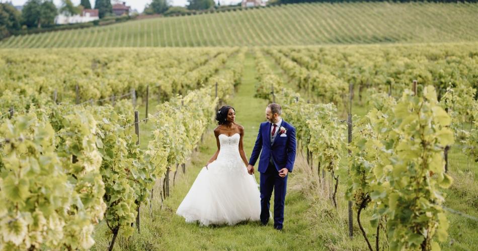 Image 1: Denbies Wine Estate Ltd