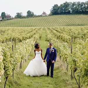 Denbies Wine Estate Ltd