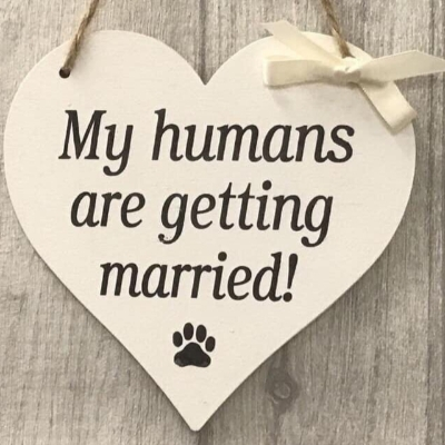Book your 2021 pet wedding chaperon with a great offer