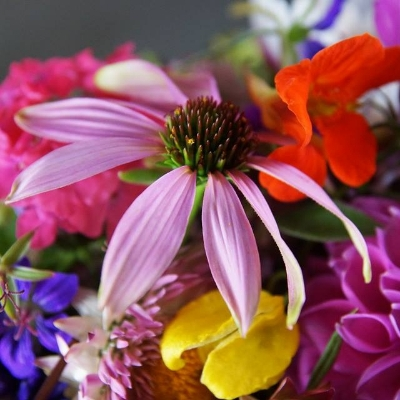 Sussex's Chirpee Flowers talks chilled-out blooms