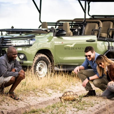 Eight Socially Distant Safari Experiences