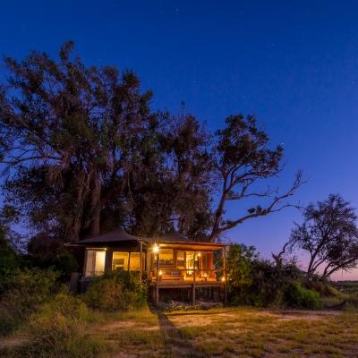 A wild ideal - travel safari-style