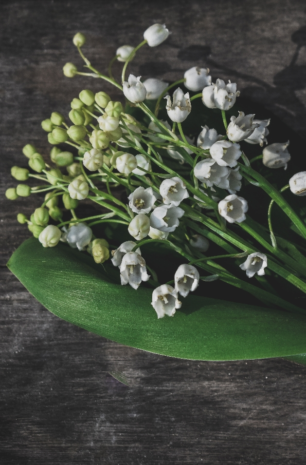 Say it with flowers: Image 2b