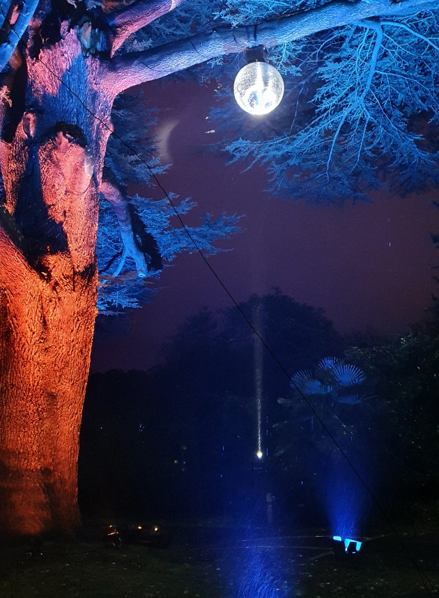 mirrorball tree at leonardslee illuminated