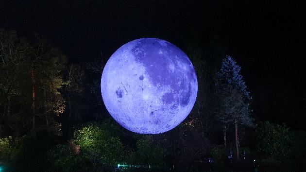 moonlit lake at leonardslee illuminated