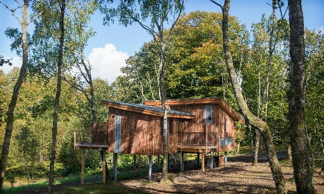 New treehouses at Lanrick house in trees