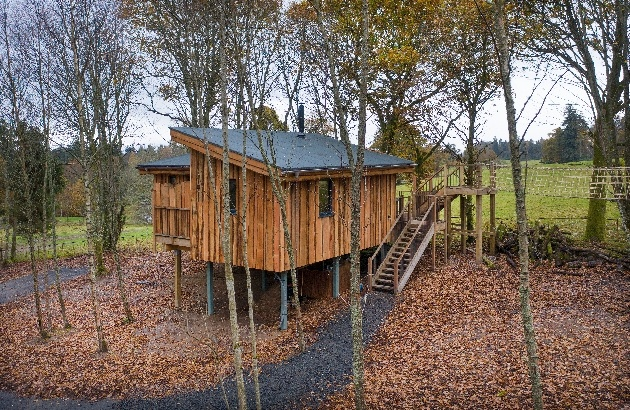 New treehouses at Lanrick treehouse in trees wet day