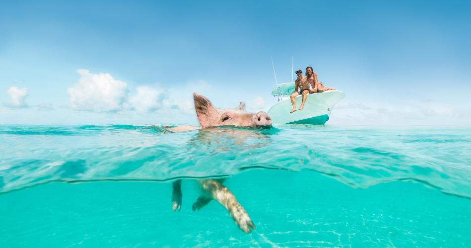 Image 1: Bahamas Tourist Office
